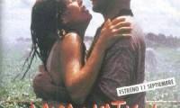 amor vertical poster
